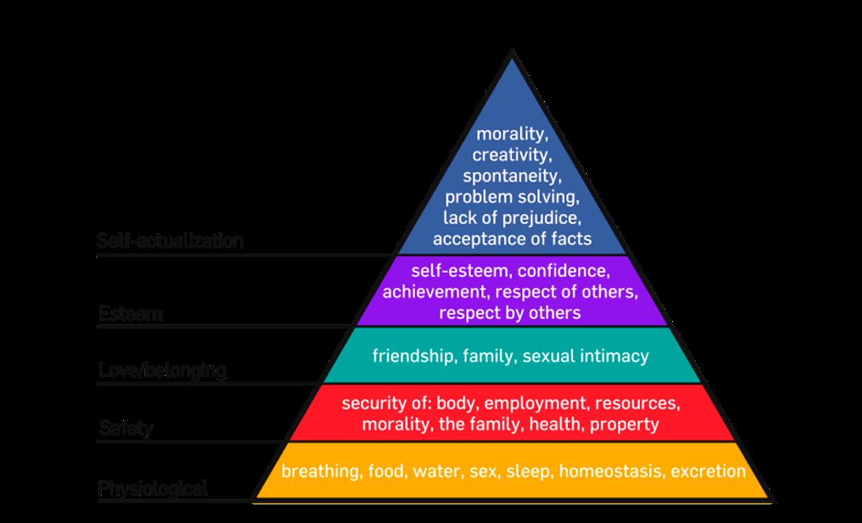 Food For A Healthy Life Blank Pyramid